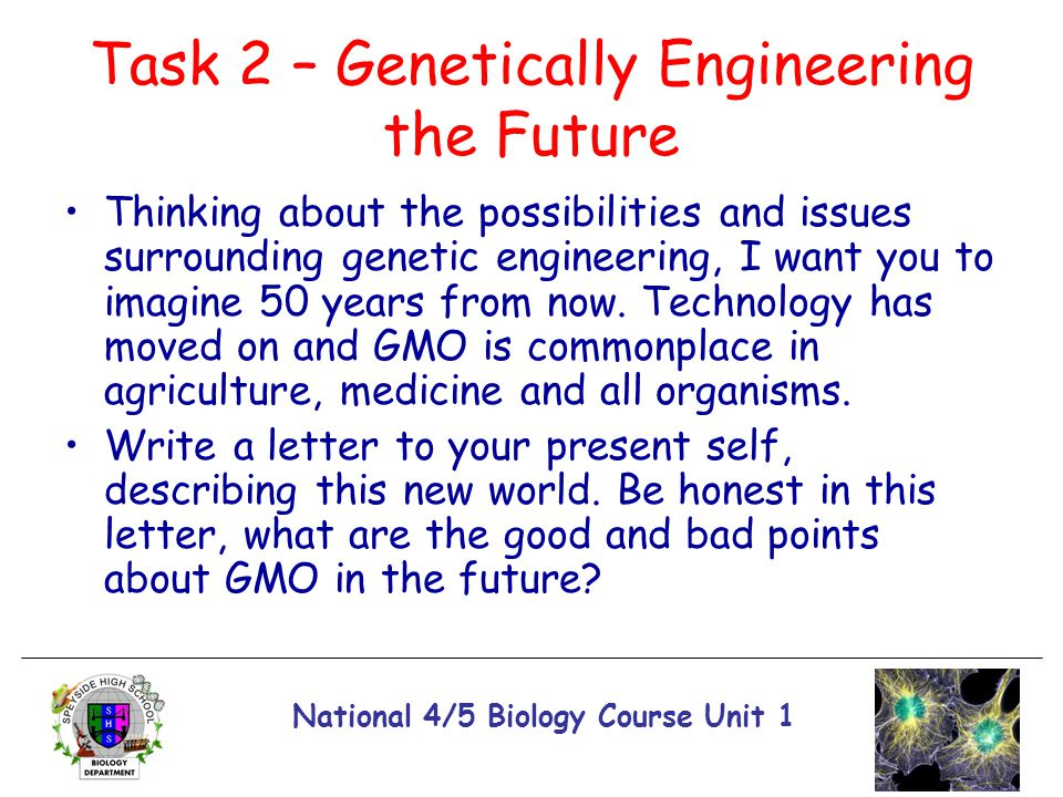 Task 2 – Genetically Engineering the Future