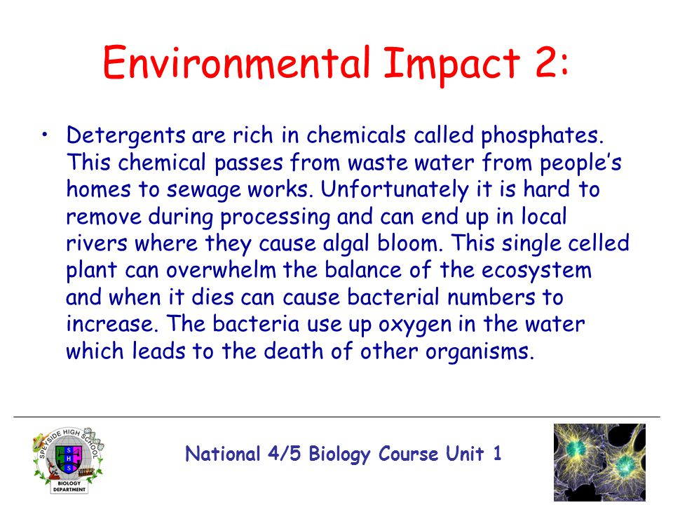 Environmental Impact 2: