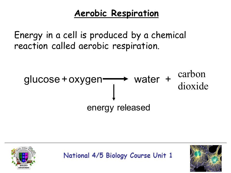 National 4/5 Biology Course Unit 1