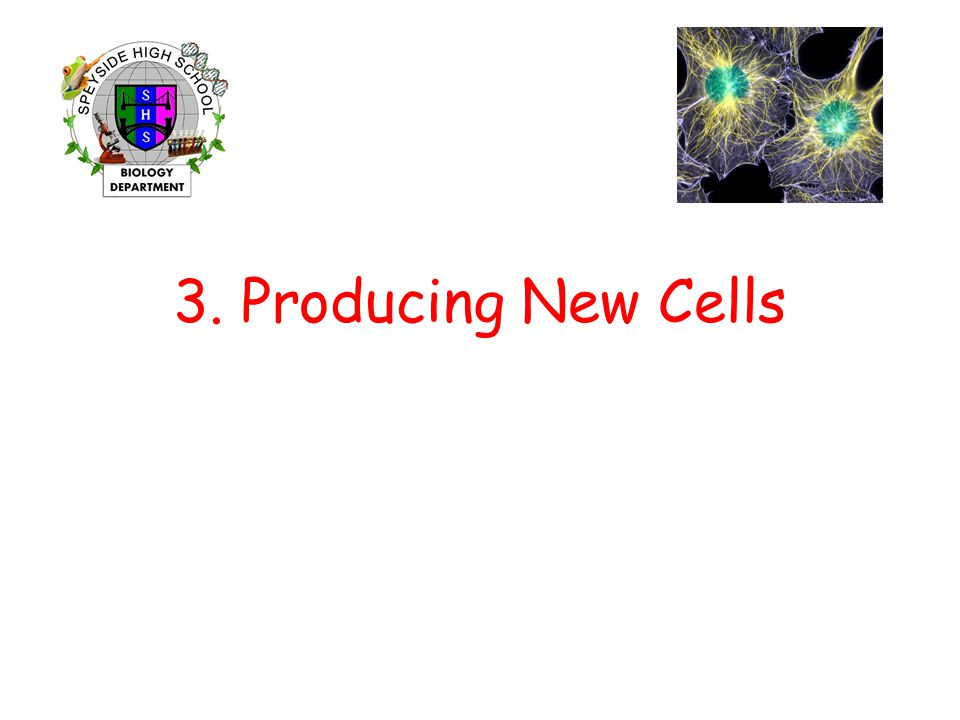 3. Producing New Cells