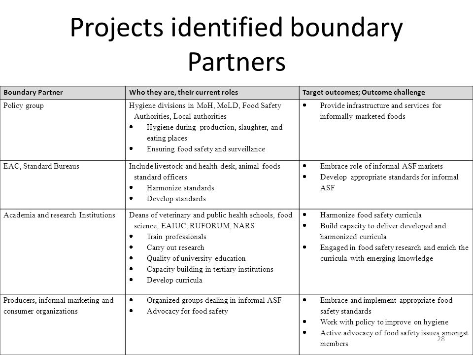 Projects identified boundary Partners