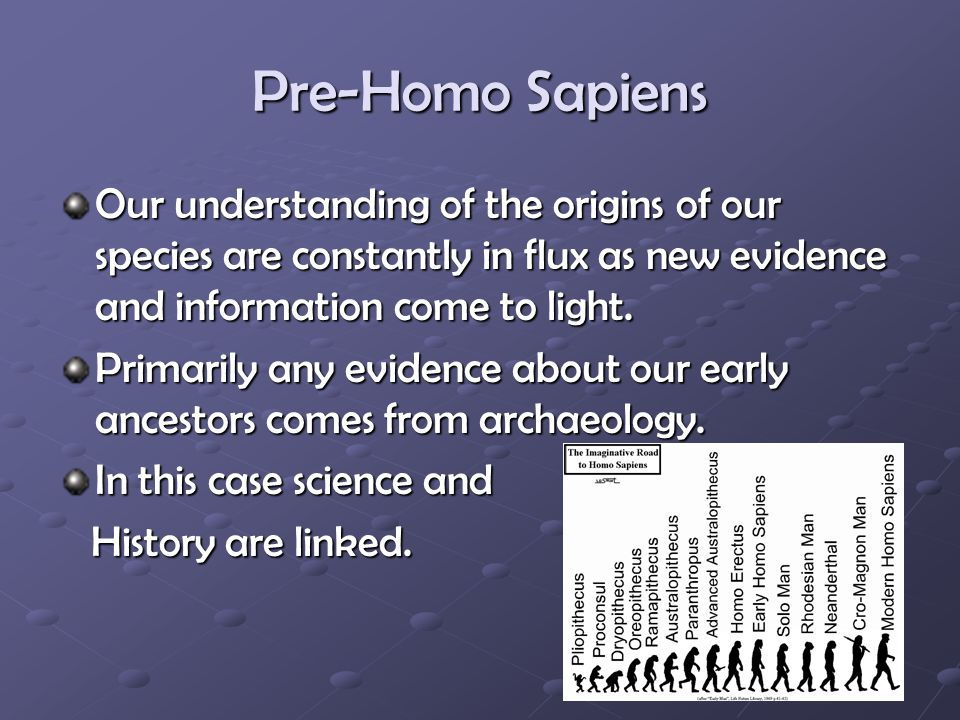 Pre-Homo Sapiens Our understanding of the origins of our species are constantly in flux as new evidence and information come to light.