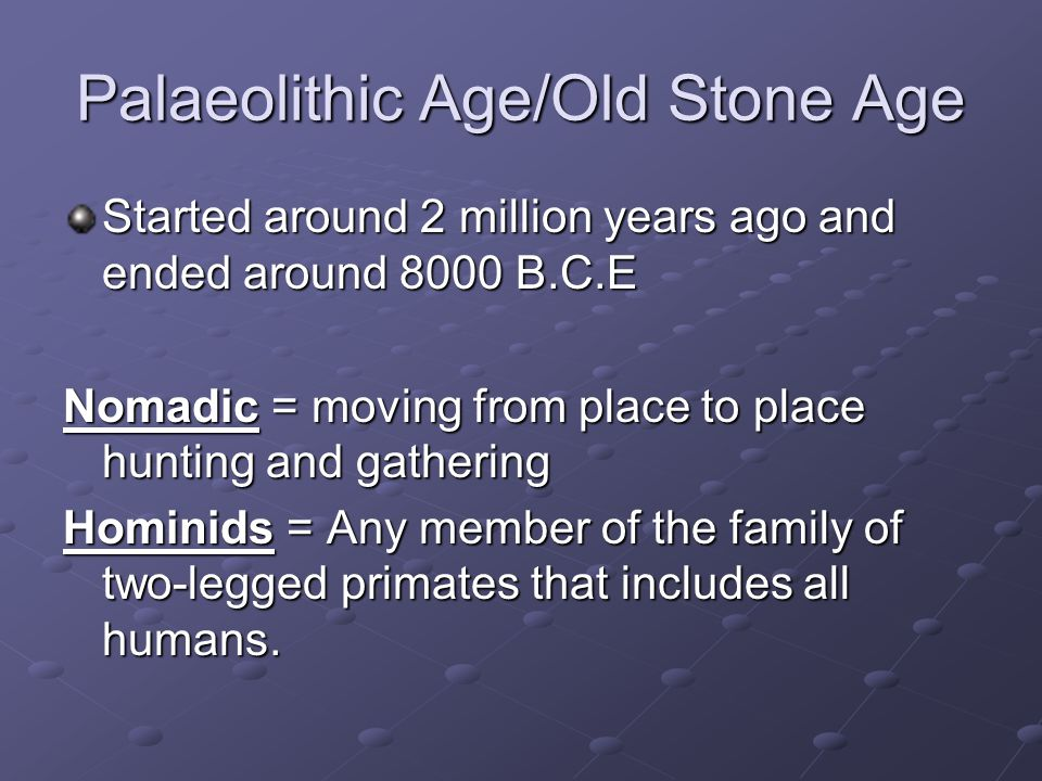 Palaeolithic Age/Old Stone Age