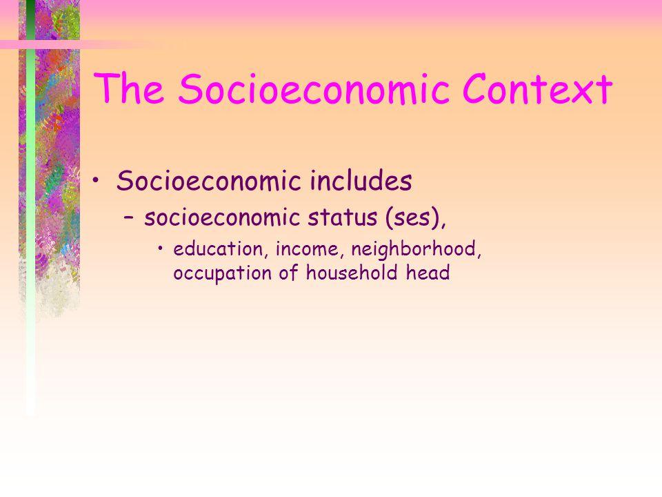 The Socioeconomic Context