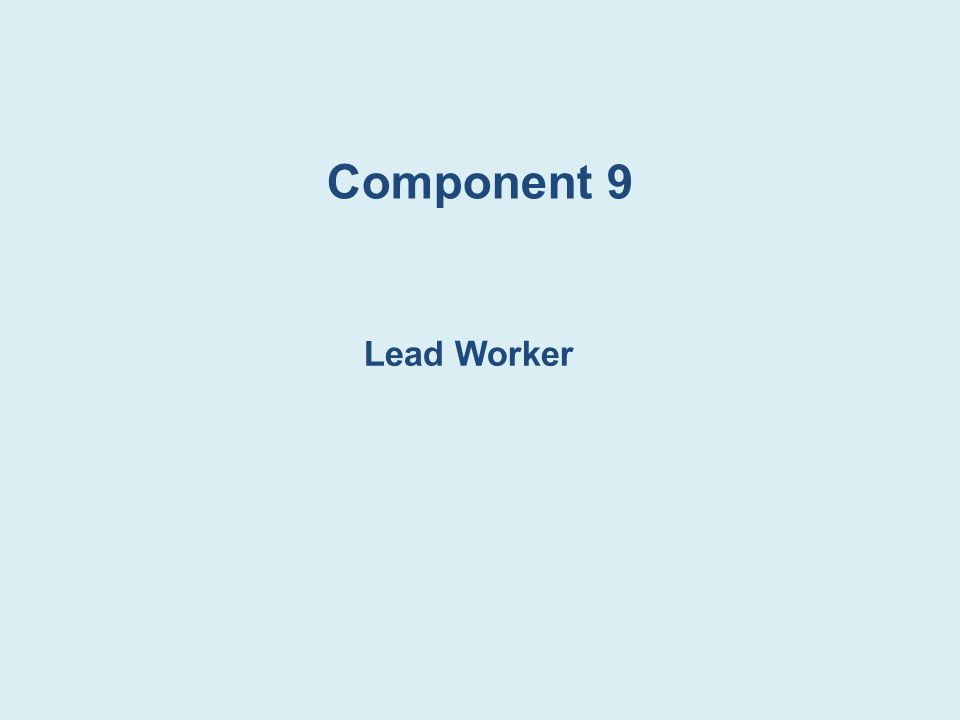 Component 9 Lead Worker Lead Worker:
