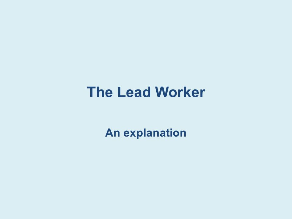 The Lead Worker An explanation