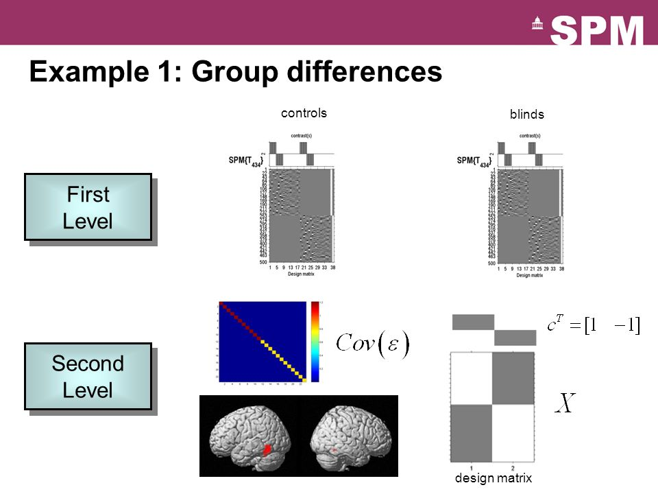 Example 1: Group differences