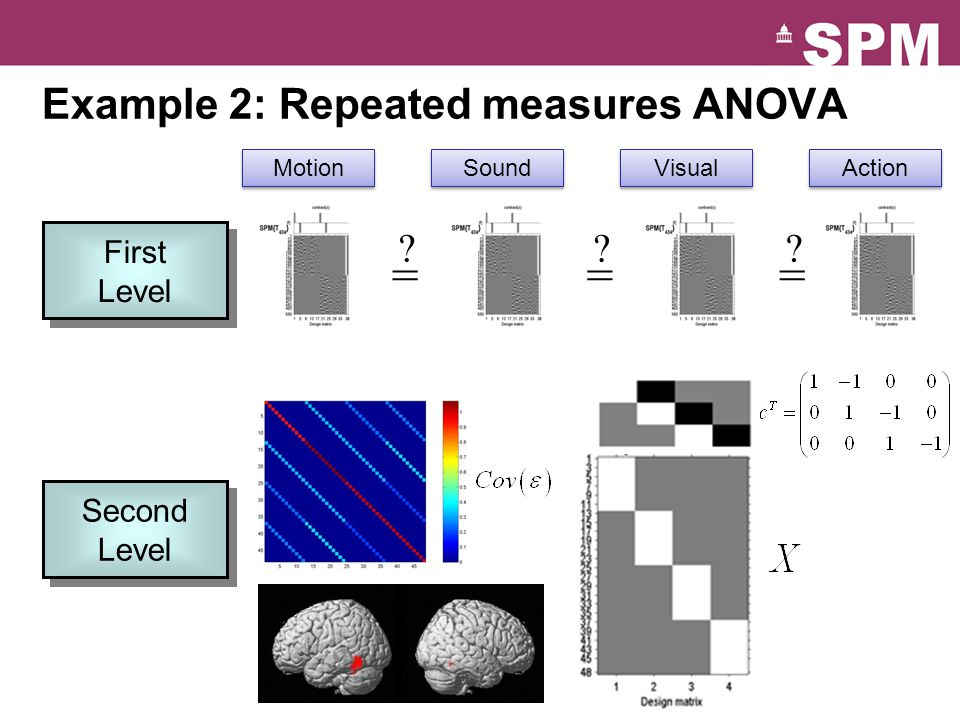 = = = Example 2: Repeated measures ANOVA First Level Second