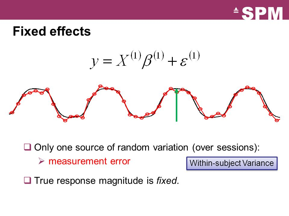 Within-subject Variance
