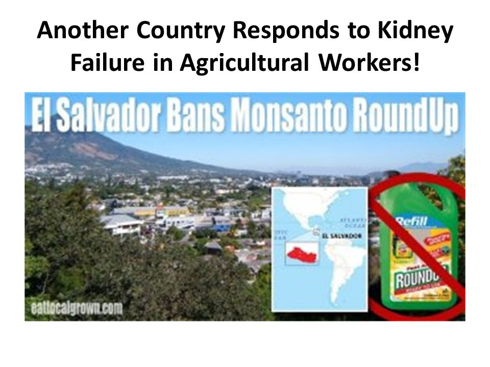Another Country Responds to Kidney Failure in Agricultural Workers!