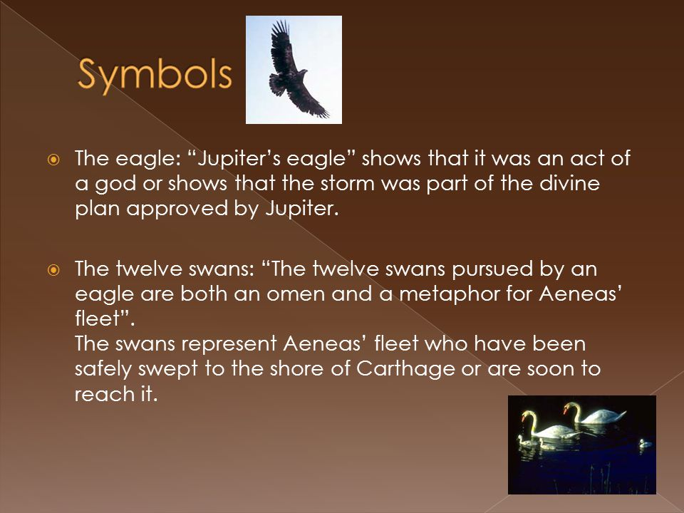 Symbols The eagle: Jupiter's eagle shows that it was an act of a god or shows that the storm was part of the divine plan approved by Jupiter.
