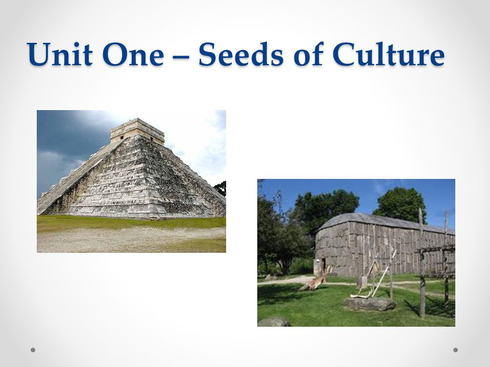 Unit One – Seeds of Culture