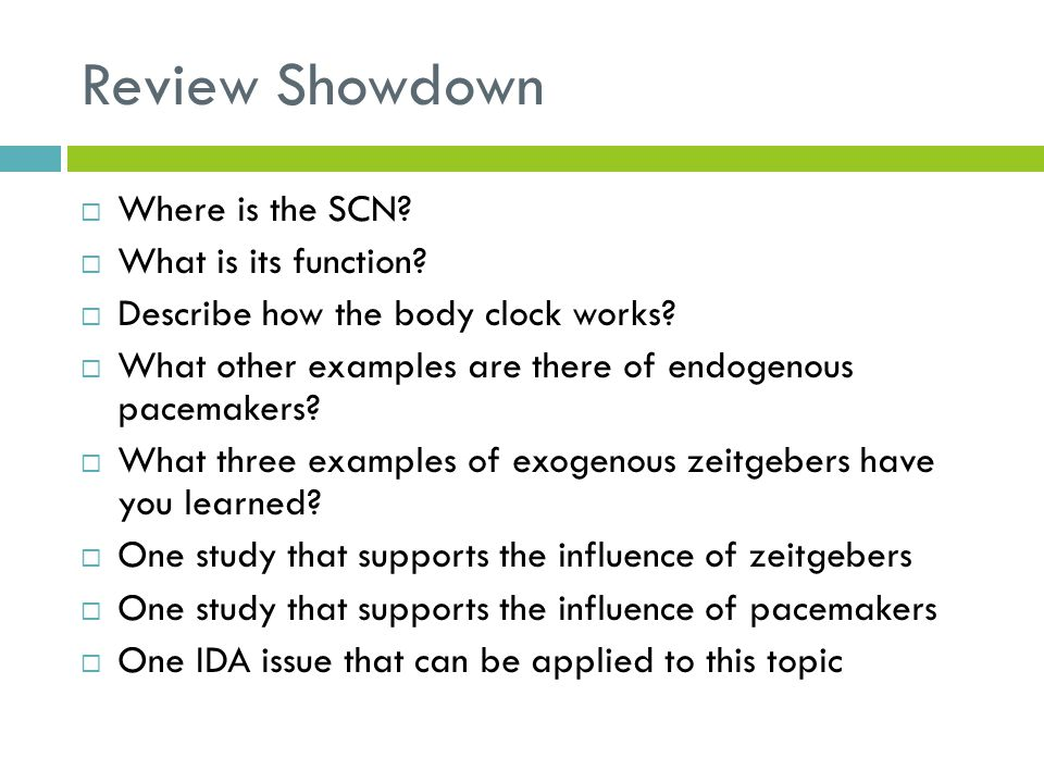 Review Showdown Where is the SCN What is its function