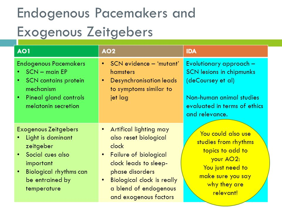 Endogenous Pacemakers and Exogenous Zeitgebers