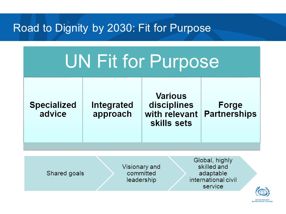 Road to Dignity by 2030: Fit for Purpose