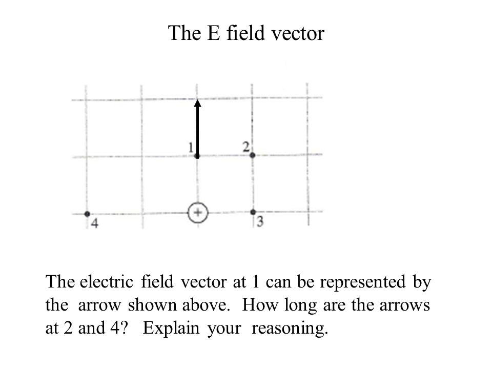 The E field vector
