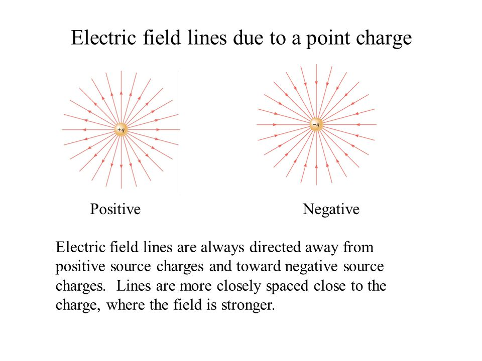 Electric field lines due to a point charge