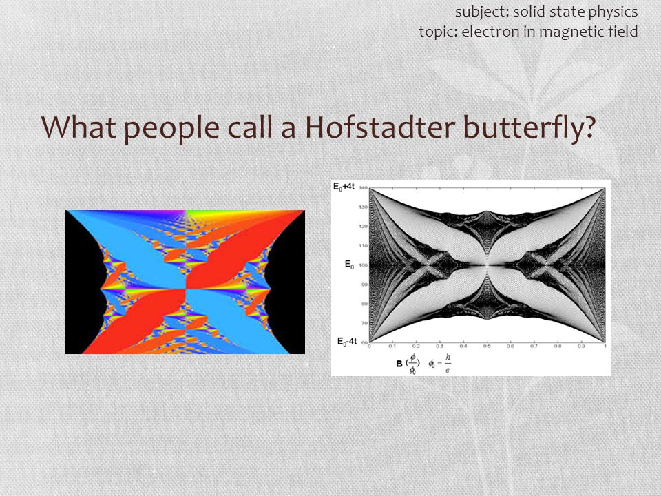 What people call a Hofstadter butterfly