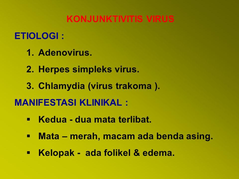 KONJUNKTIVITIS VIRUS ETIOLOGI : Adenovirus. Herpes simpleks virus. Chlamydia (virus trakoma ). MANIFESTASI KLINIKAL :