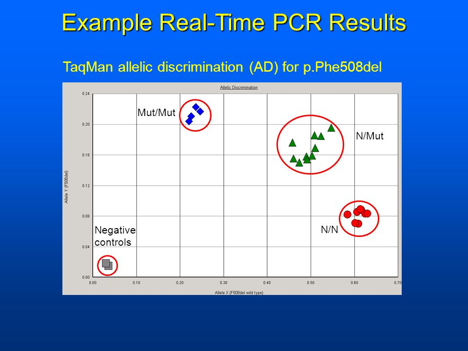 Example Real-Time PCR Results