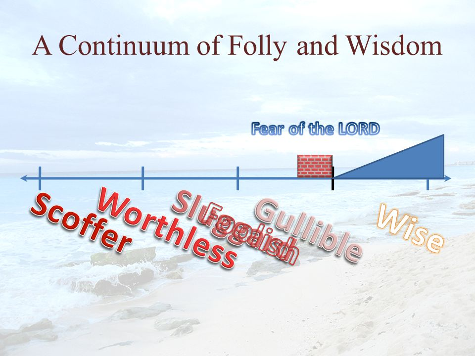 A Continuum of Folly and Wisdom
