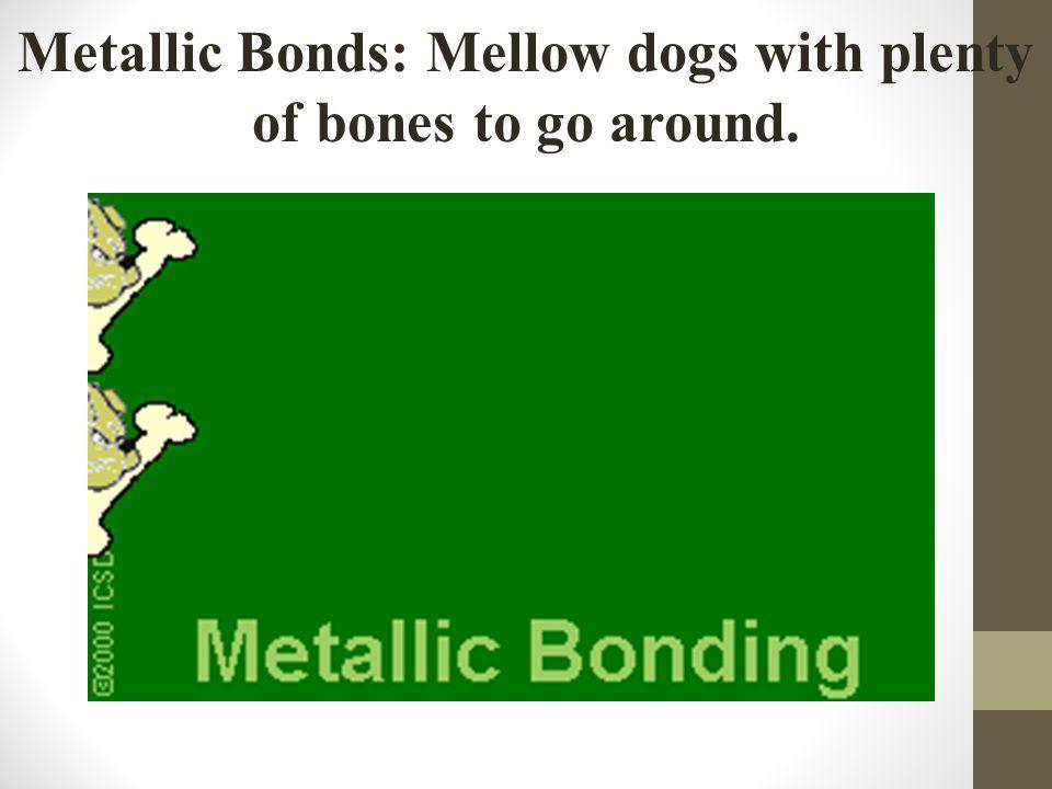 Metallic Bonds: Mellow dogs with plenty of bones to go around.