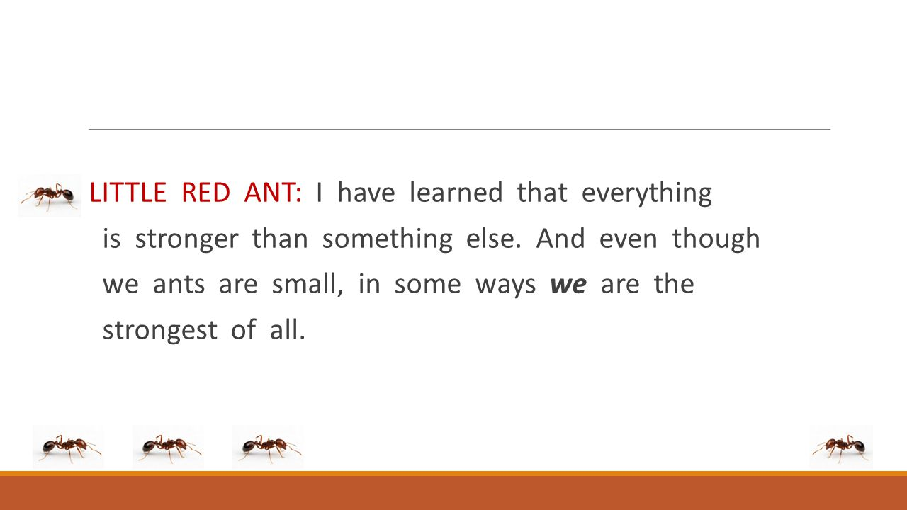 LITTLE RED ANT: I have learned that everything