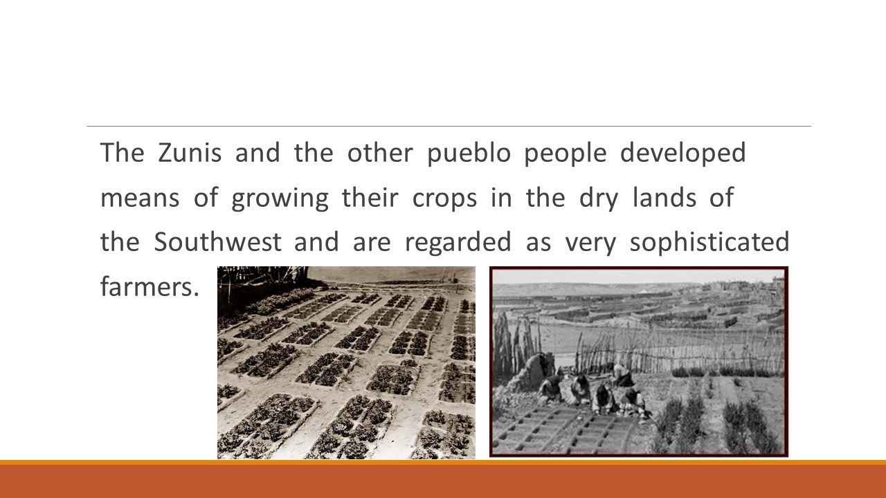 The Zunis and the other pueblo people developed