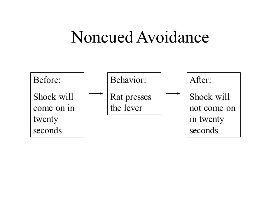 Noncued Avoidance Before: Shock will come on in twenty seconds