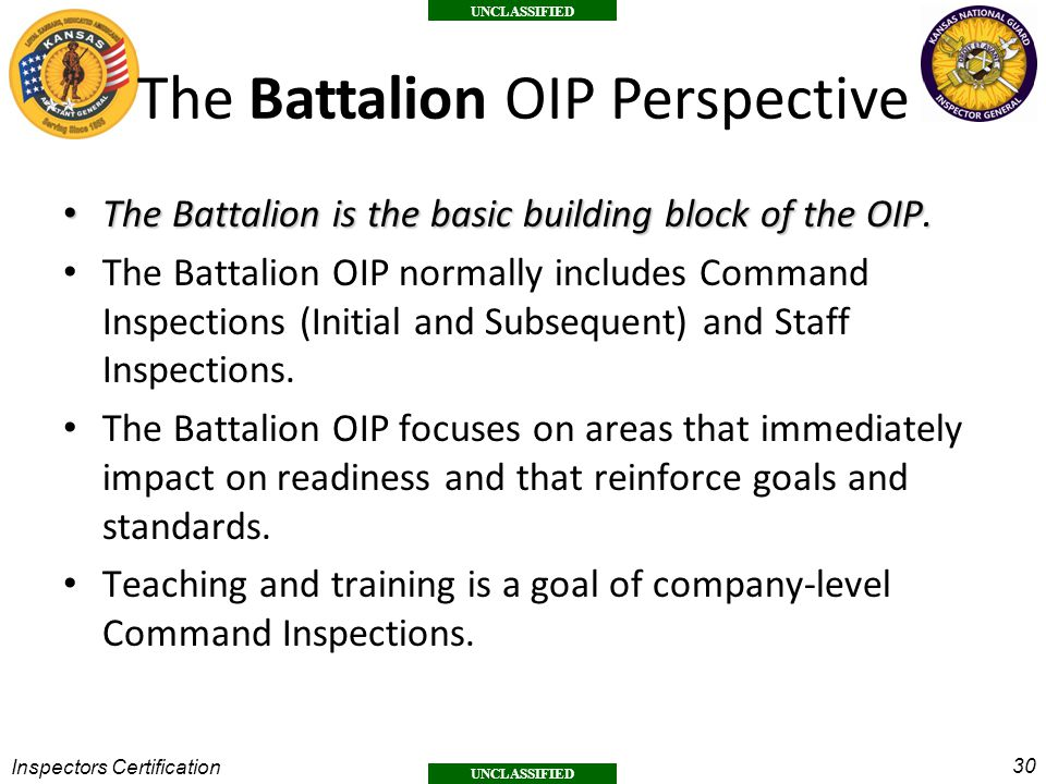 The Battalion OIP Perspective