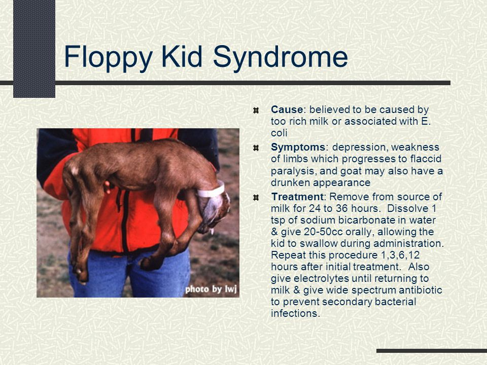 Floppy Kid Syndrome Cause: believed to be caused by too rich milk or associated with E. coli.