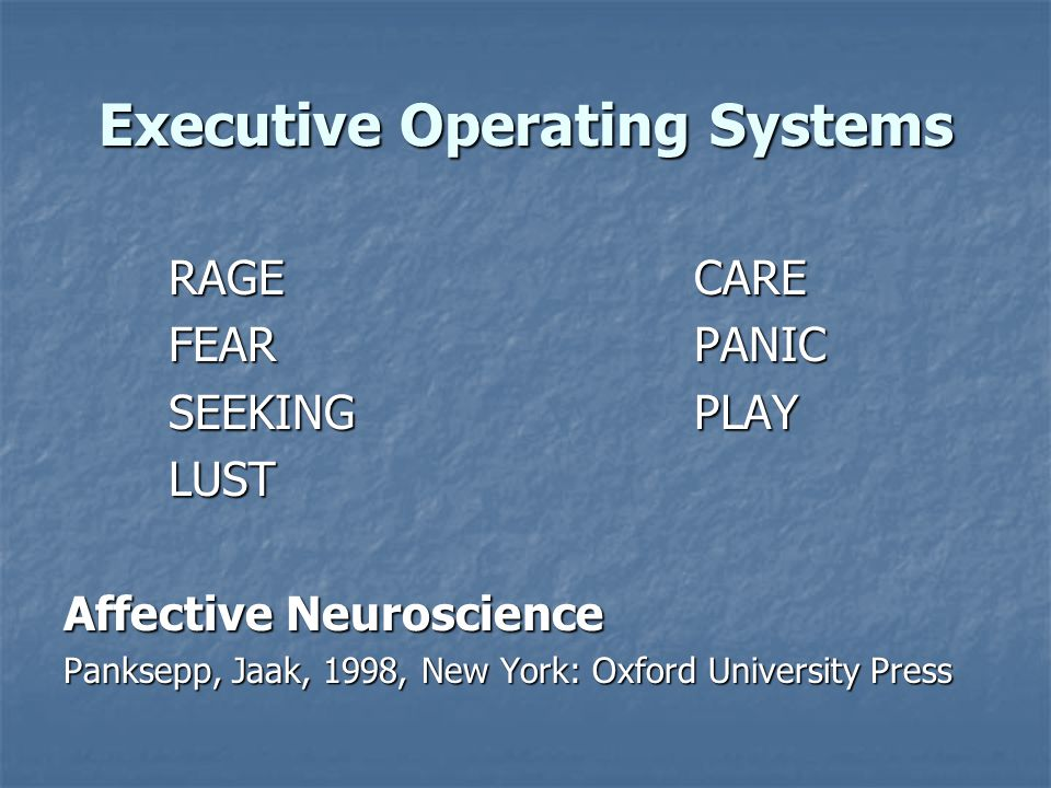 Executive Operating Systems