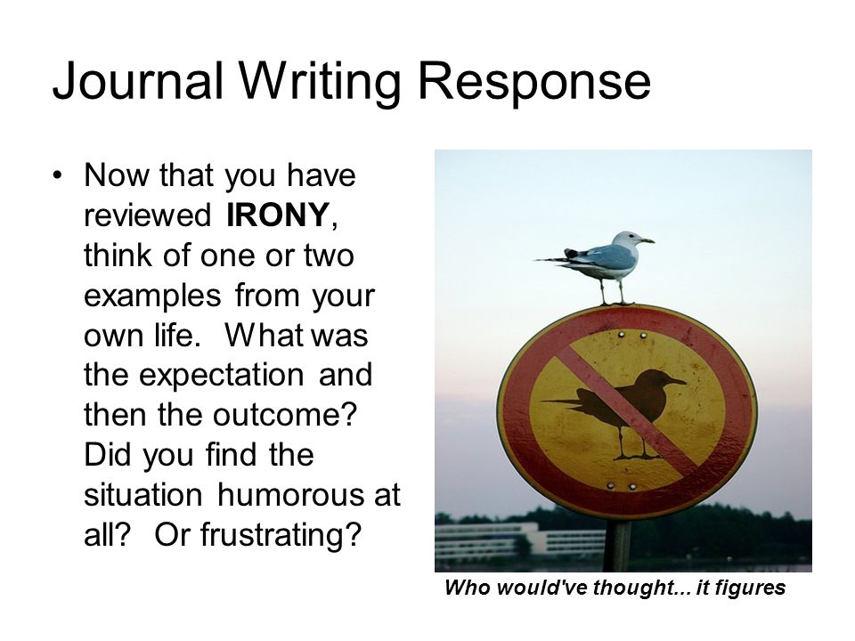 Journal Writing Response