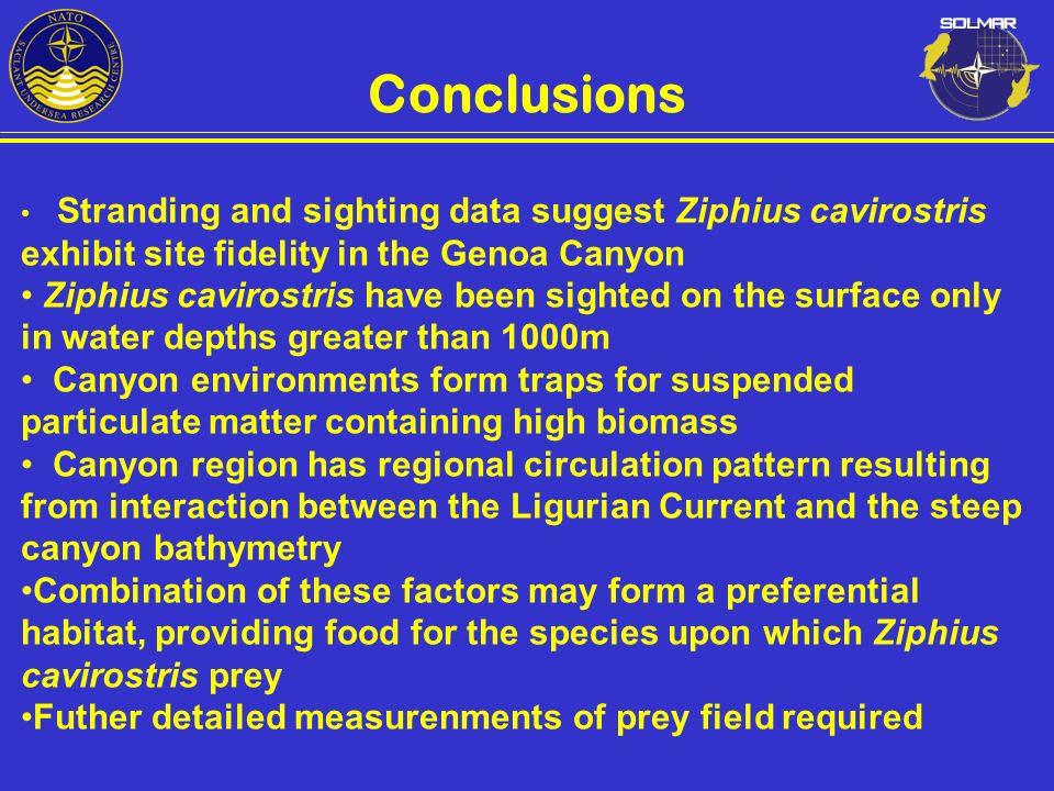 Conclusions Stranding and sighting data suggest Ziphius cavirostris exhibit site fidelity in the Genoa Canyon.