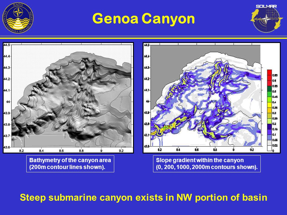 Steep submarine canyon exists in NW portion of basin