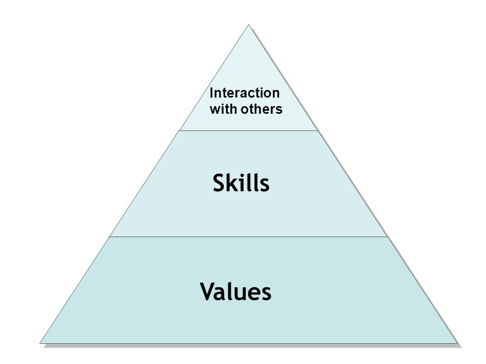 Skills with others Values Interaction