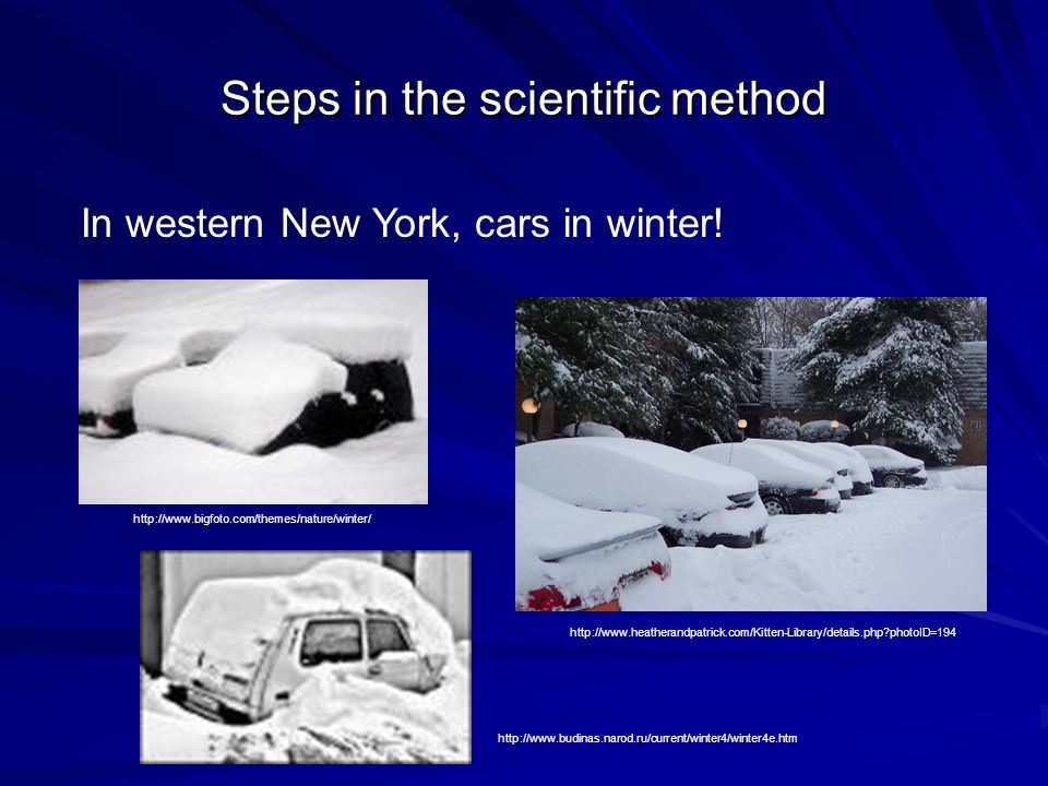 Steps in the scientific method