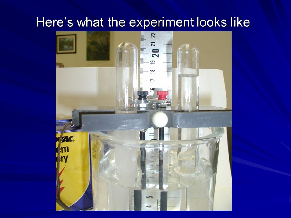 Here's what the experiment looks like