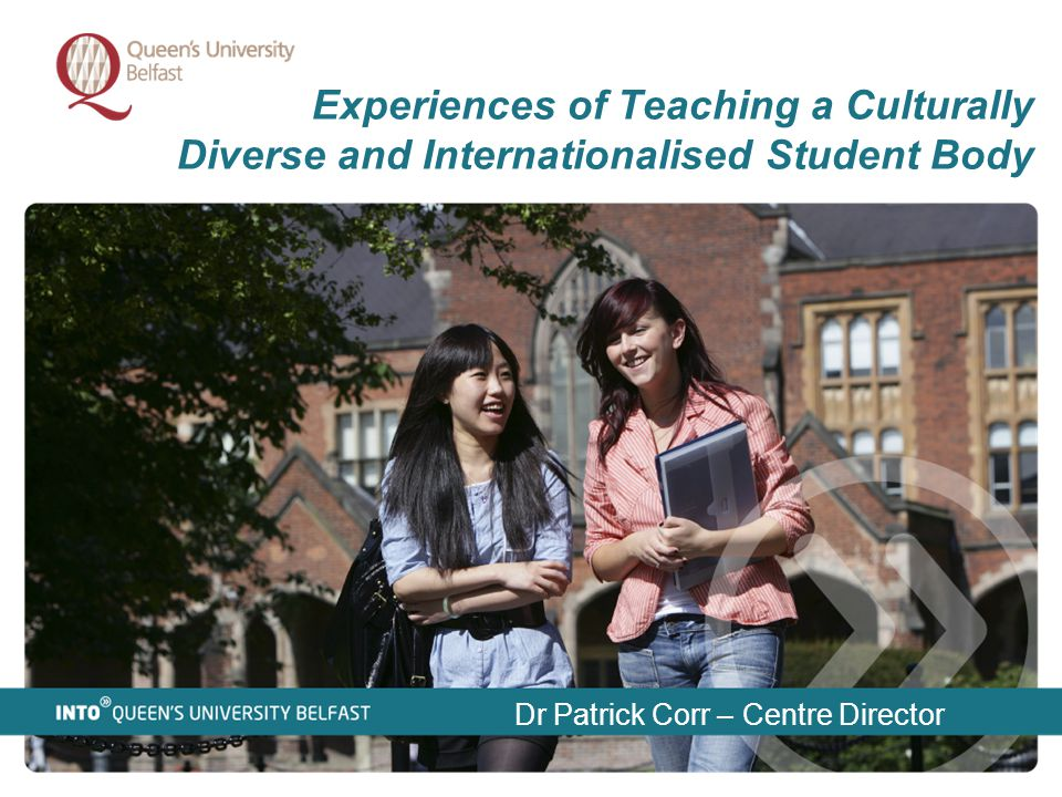 Experiences of Teaching a Culturally Diverse and Internationalised Student Body