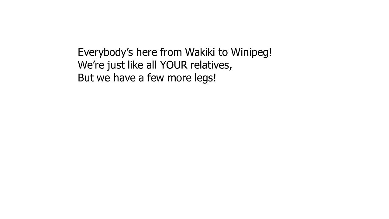 Everybody's here from Wakiki to Winipeg!