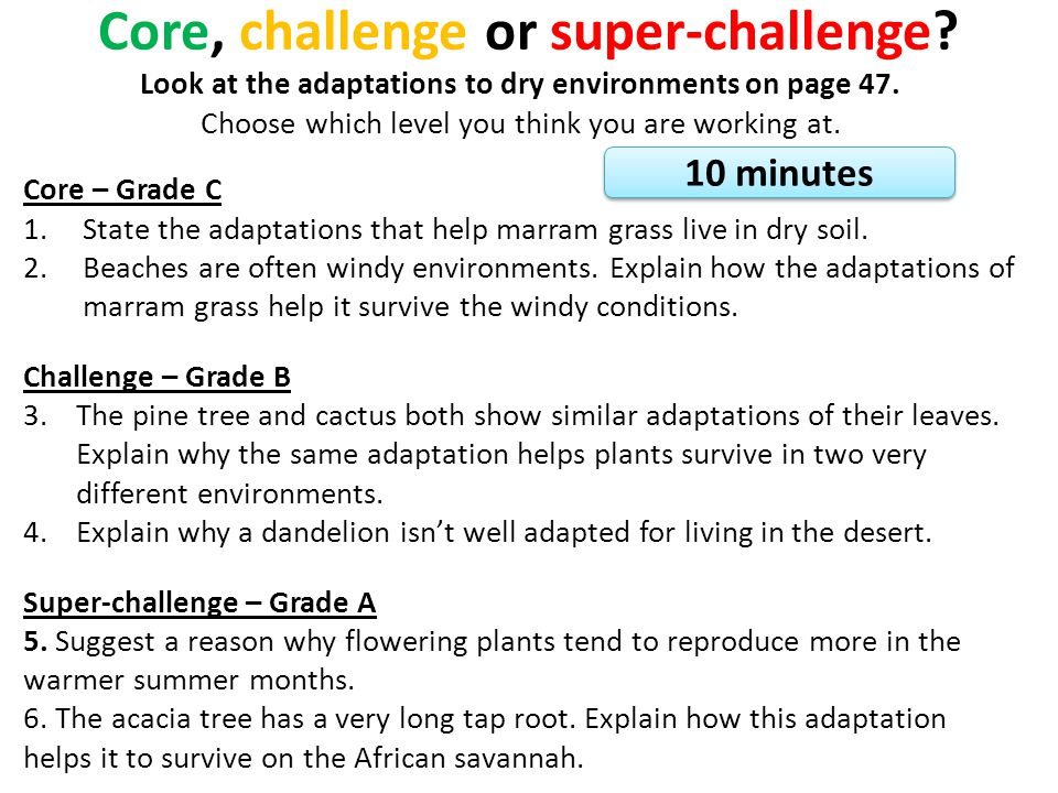 Core, challenge or super-challenge