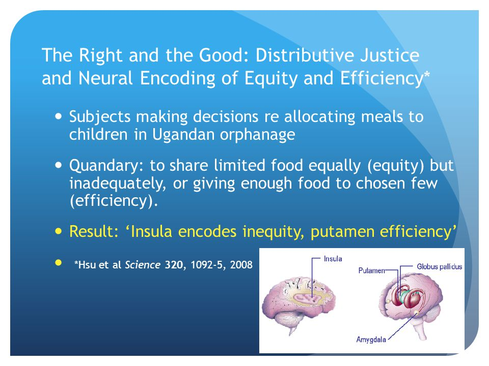 The Right and the Good: Distributive Justice and Neural Encoding of Equity and Efficiency*