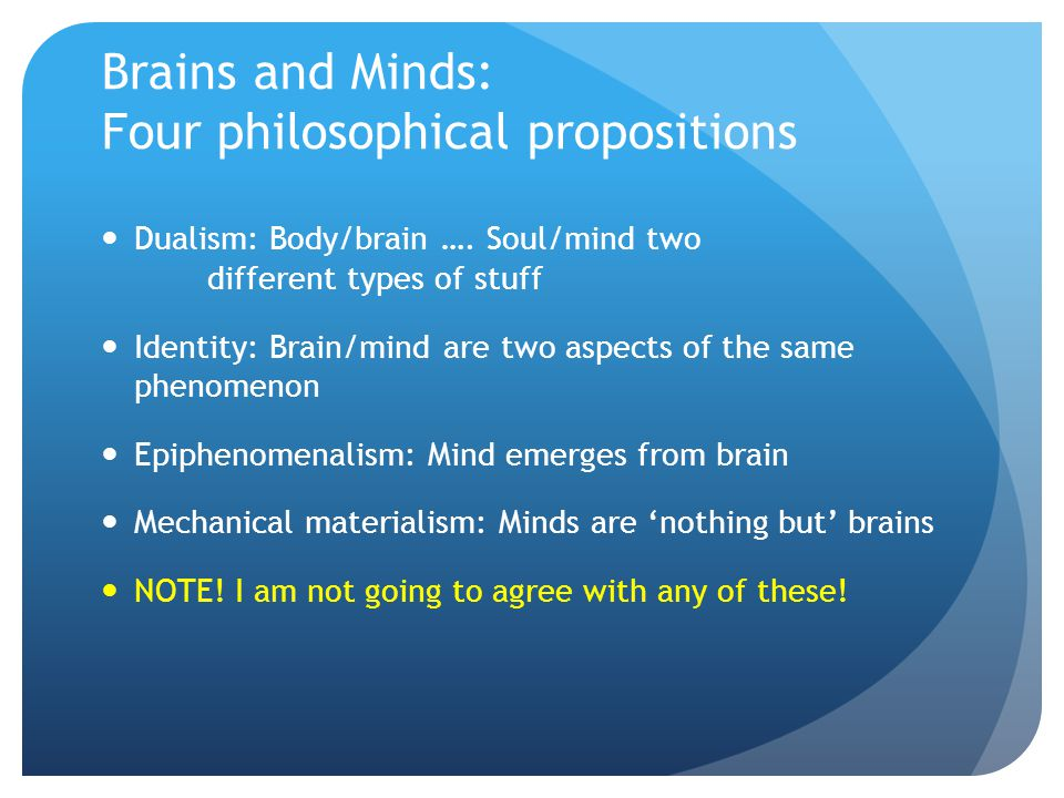 Brains and Minds: Four philosophical propositions
