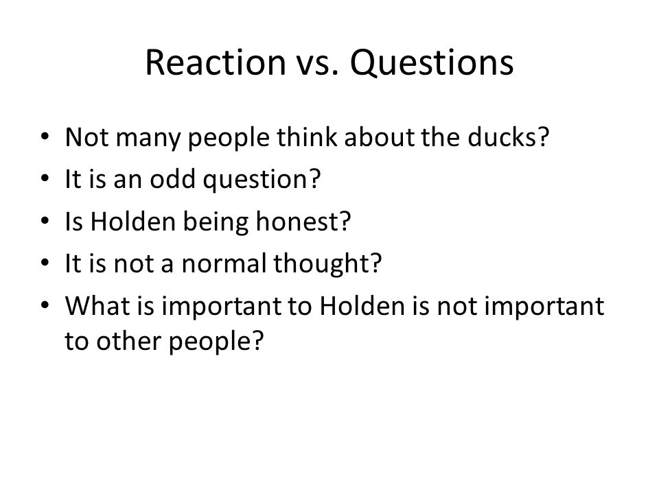 Reaction vs. Questions Not many people think about the ducks