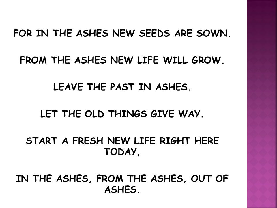 FOR IN THE ASHES NEW SEEDS ARE SOWN.