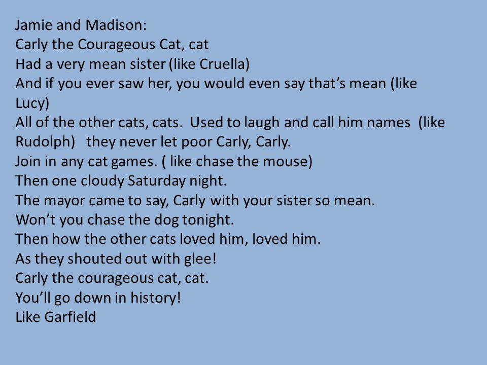 Jamie and Madison: Carly the Courageous Cat, cat. Had a very mean sister (like Cruella)