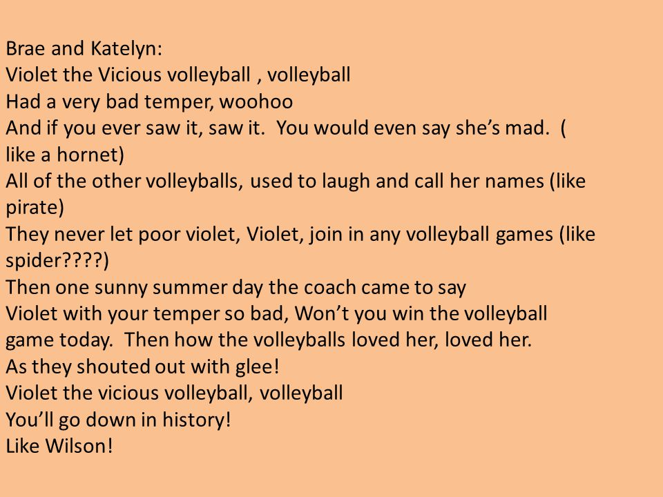 Brae and Katelyn: Violet the Vicious volleyball , volleyball. Had a very bad temper, woohoo.