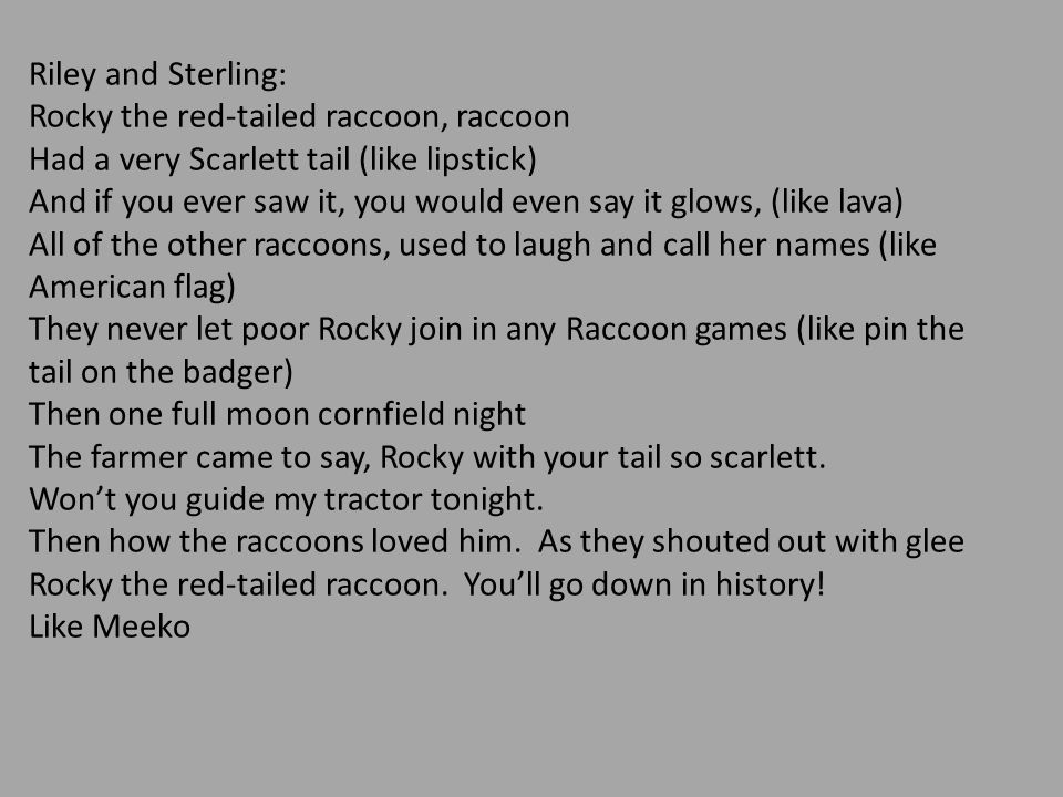 Riley and Sterling: Rocky the red-tailed raccoon, raccoon. Had a very Scarlett tail (like lipstick)