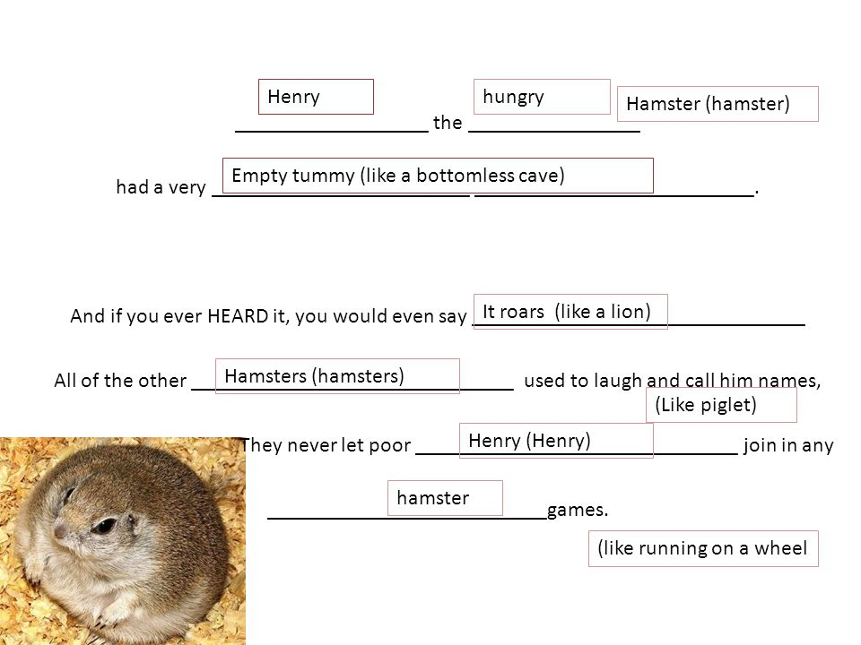 Henry hungry. Hamster (hamster)
