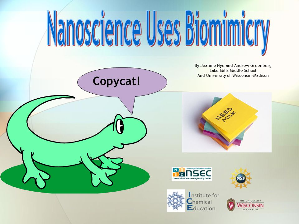 Nanoscience Uses Biomimicry